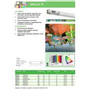18W Grolux F18W/GRO Retail 0000709, ø26mm T8 fénycső (G13) 590mm