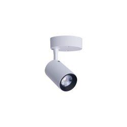 NOWODVORSKI Iris LED Mennyezeti lámpa TL-8993