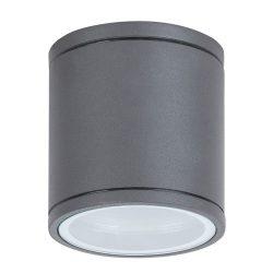 Rábalux Akron Kültéri mennyezeti lámpa GU10 1x MAX 35W 8150