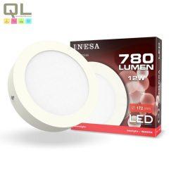 LED mennyezeti lámpa 12W 6000K 60546