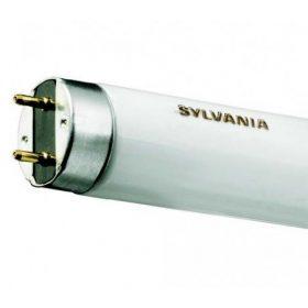 T8 ø26mm fénycső (G13)